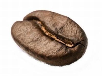 Arabica koffieboon herkenbaar aan de S vorm van van de nerf.